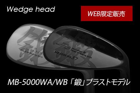 wb-5000-blast